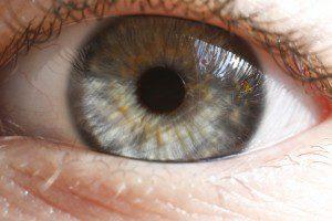 eyeball watching