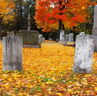 What is a Wrongful Death Case?